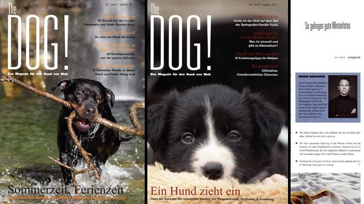 Cover Bilder für das «The Dog» Magazin (Ausgaben 2/13 und 2/13)